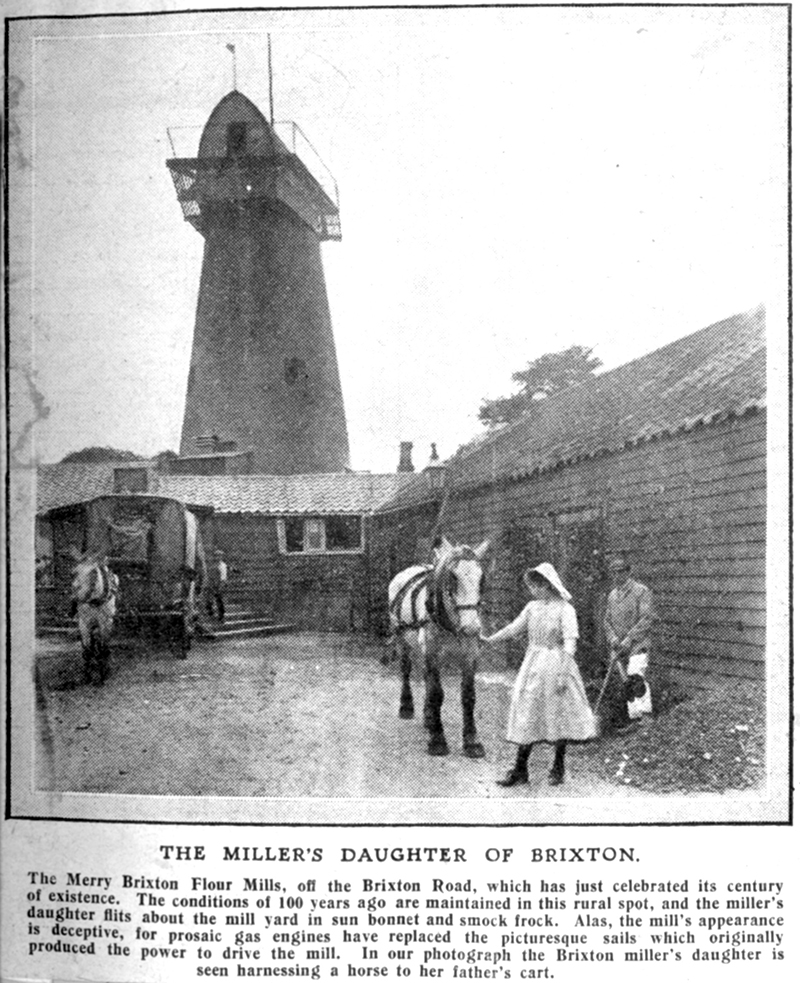 Brixton Windmill in 1902