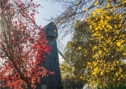 Brixton Windmill greeting card - autumn