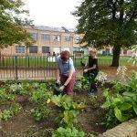 Gardening group at Brixton Windmill